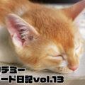 トレード日記vol13